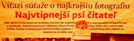 Grétka, Hugo a Naty sa umiestnili na 2.mieste v celonárodnej fotosúťaži novin SME a www.havino.sk